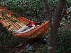 hammock 2 250.JPG